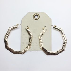 NWT Anthropologie hoop earrings